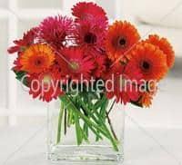 flores-bodas