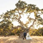 Verdad: preste atención a las prohibiciones de incendio en su boda este verano